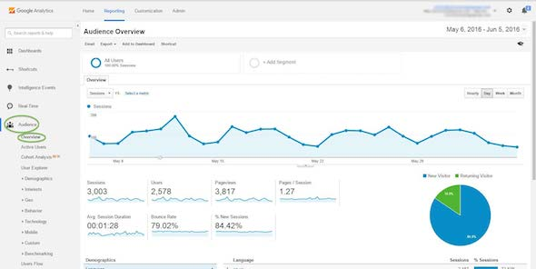 viewers and traffic google analytics screenshot